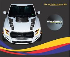 Ford F150 F-150 Raptor Rally Stripes SVT 2017 Hood Blackout Fader kit Decal Claw