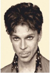 PRINCE - complete counted cross stitch sewing kit *Jann Designs