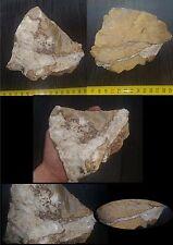 Très joli bloc avec barytine cristallisée(France herault)1,120kg minéraux baryte