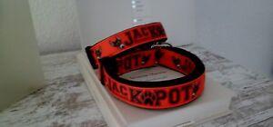 Halsband-Jack Russel-verstellbar-2,5cm breit-Neu-Neu
