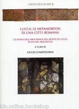 Lucca Le metamorfosi di una città romana Lo scavo dell'area Banca del Monte di L