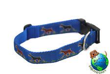 Doberman Pinscher Dog Breed Adjustable Nylon Collar Large 12-20″ Blue