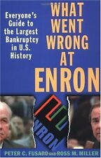 What Went Wrong at Enron: Everyones Guide to the