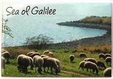 "Sea of Galilee ""FEED MY SHEEP"" MAGNET Lamb Holy Land Jesus Christ Bible Teaching"