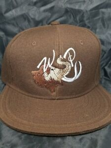 """WSP """"Big Wooly Mammoth"""" Fitted Hat Widespread Panic sizes 7 to 8 15 hat colors"""
