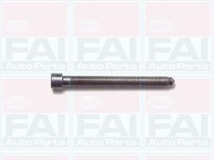 Head Bolt (Box Of 10) To Fit Audi A4 (8D2 B5) 1.8 (Adr) 11/94-11/00 Fai Auto