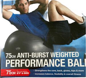 SPRI 75cm Anti-burst Weighted Performance Ball, Grey, New
