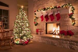 20 PROFESSIONAL PRO  * CHRISTMAS VOL 1 BACKING TRACKS * xmas