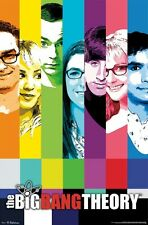 THE BIG BANG THEORY ~ RAINBOW CAST 22x34 TV POSTER Jim Parsons Kaley Cuoco