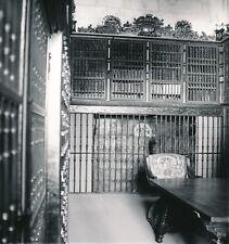 SALAMANQUE c. 1960 - Bibliothèque Salle des Manuscrits Espagne - Div 12656