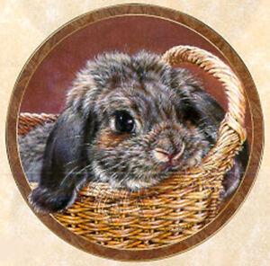 Bunny Tales Collection, by Vivi Crandall, Bradford Exchange Plate, Basket Case