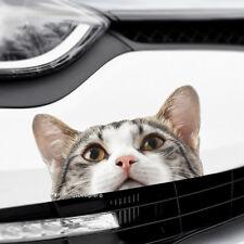 PEEKING CAT Peeper Funny Novelty Car,Van,Bumper,Window Vinyl Decal Sticker