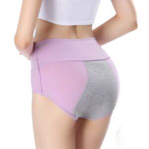 Womens Menstrual Period Panties Bamboo Fiber High Waist Underwear Leakproof - Sl