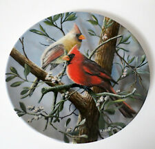 Knowles Collector Plate The Cardinal Birds Of Your Garden Collection 1984
