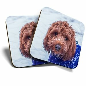 2 x Coasters - Cockapoo Dog Puppy Labradoodle  #44632