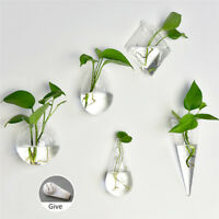 Home Garden Clear Wall Hanging Plant Terrarium Glass Planter Vase Pots Container
