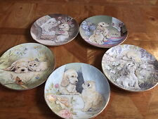 5 LOVELY ROYAL WORCESTER PUPPY AND KITTEN COLLECTORS PLATES
