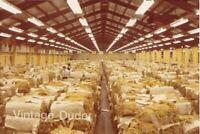 Vintage 1970s 2.5 Million LBS of Tobacco Auction Tillsonberg Ontario Canada