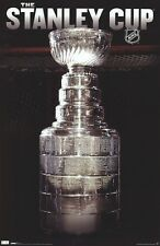 NHL ~ THE STANLEY CUP SILVER NET ~ 22x34 POSTER National Hockey League