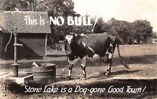 "Stone Lake Wisconsin~Dog-Gone Good Town~""This is No Bull""~Diary Cow~1942 RPPC"