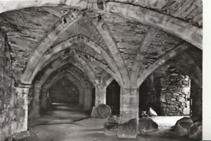County Durham Postcard - Finchale Priory - Undercroft of Frater - Ref TZ5819