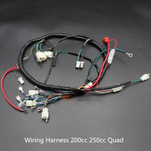 QUAD WIRING HARNESS 200 250 300cc Chinese Electric start Loncin zongshen ducar