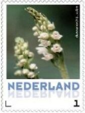 Nederland 2013 Ucollect orchideeen 12 Dennenorchis  luxe postfris/mnh