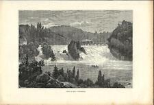 Stampa antica Cascata di SCHAFFHAUSEN  Svizzera 1890 Old Print Switzerland