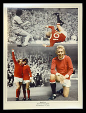 New Denis Law Signed Manchester United 12x16 Football Montage