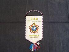 Conseil International du Sport Militaire Cism pennant banner, Russian delegation