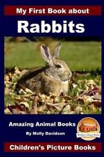 My First Book about Rabbits - Amazing Animal Books - Children's Picture Books.