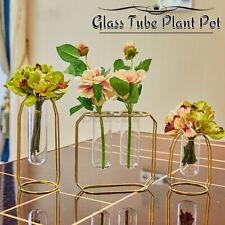 Glass Vase Hydroponic Plants Pot Flowers Terrarium Container Holder Tube Decor