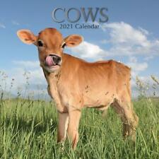 Cows - 2021 Wall Calendar - Brand New - 20135