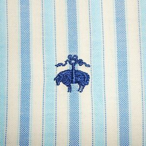 Large Brooks Brothers Non-Iron BLUE/WHITE OXFORD Short Sleeve Button-Front Shirt