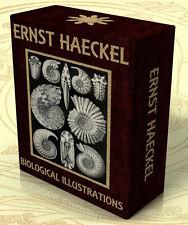 KUNSTFORMEN DER NATUR + other works, Ernst Haeckel 307 Color Art plates DVD-Rom