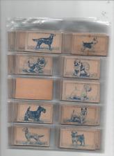 cigarette cards famous dog breeds full set 1952
