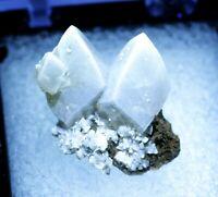 Calcite 2 sharp crystals on matrix TN brilliant fluorescence Newport Quarry, MI