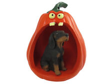 Coonhound Black & Tan Halloween Statue Figurine and Spooky Pumpkin