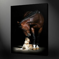 Not Framed 12x18'' Home Decor Canvas Prints Wall Pictures Art Animal Dog Horse