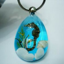 Seahorse Amber Car Key Buckle Keyring Keychain with A Beautiful Gift Box