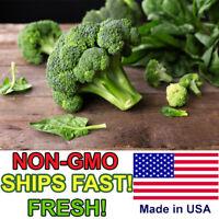 ORGANIC Broccoli Seeds | Non-GMO | FRESH Vegetable Garden Seeds