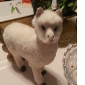 Alpaca White Fuzzy . FREE SHIP
