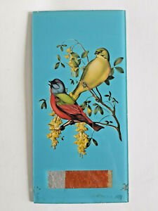 Vintage Reverse Painted Glass Bird Art Turquoise Plaque Picture Unframed