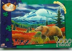 """2006 Serendipity STORM COMING 1000 Piece Jigsaw Puzzle 20""""X27"""""""