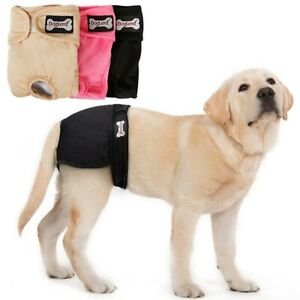Female Puppy Dog Diaper Pants Physiological Practical Menstrual Underwear Soft