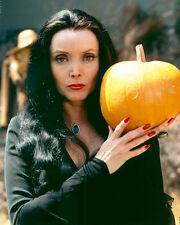 CAROLYN JONES THE ADDAMS FAMILY COLOR 11X14 PHOTO