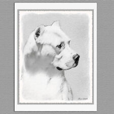 6 Dogo Argentino Argentinian Mastiff Art Note Greeting Cards