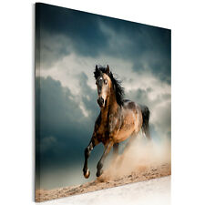 Large HD Canvas Prints Wall Art Painting Pictures -One Running Horse Unframed
