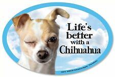 "Life's better with a Chihuahua (Apple)  6"" x 4"" Oval Magnet Made in the USA"