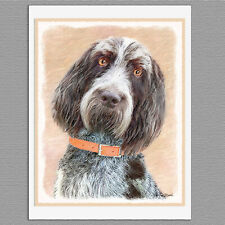 6 Spinone Italiano Dog Blank Art Note Greeting Cards